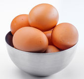Plenty of eggs Royalty Free Stock Photo