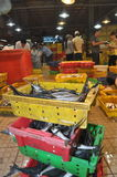 Plenty of fisheries in baskets are waiting for purchasing at the Binh Dien wholesale night seafood market, the biggest one in Ho C Stock Images