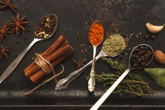 Plenty of herbs and spices on dark old table. Plenty of herbs and spices in metal spoons and around on dark old table or background with copysapce for menu Stock Photo