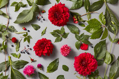 Plenty red natural roses seamless background Stock Photos