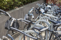 Plenty of Road Bicycles Sranding Arranged in Row in San-Francisco Royalty Free Stock Photography
