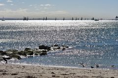 Sail ships on silver sea. Plenty of sail ships in distance on silver sea watched from sandy shore Stock Image