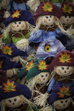 Plenty of Scarecrows. Many scarecrows are placed together in a seasonal Halloween display Royalty Free Stock Images