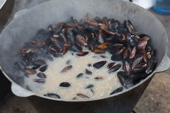 Plenty of seafood, mussels on grill pan Royalty Free Stock Photography