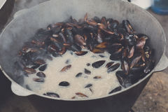 Plenty of seafood, mussels on grill pan Stock Image