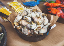 Plenty of seafood, veined rapa whelk on grill pan Royalty Free Stock Images