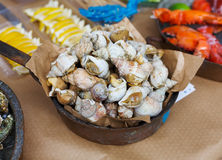 Plenty of seafood, veined rapa whelk on grill pan Stock Images