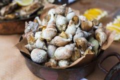 Plenty of seafood, veined rapa whelk on grill pan Stock Photos