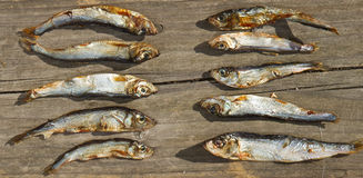 Plenty of small dried fishes Royalty Free Stock Images