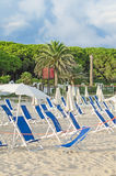 Plenty of sun loungers. On the beach royalty free stock image