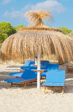 Plenty of sun loungers. Plenty of sun loungers on the beach royalty free stock image