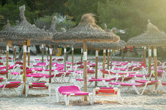 Plenty of sun loungers. Royalty Free Stock Photography