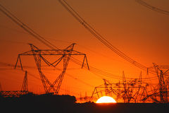 Plenty of transmission towers in sunset light Stock Photography