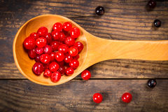 Plenty of viburnum in wooden spoons Royalty Free Stock Image