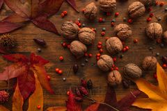 Plenty of walnut in shell, top view royalty free stock photography