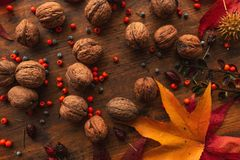 Plenty of walnut in shell, top view stock photography