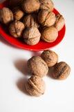 Plenty of walnuts Royalty Free Stock Photography