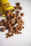 Plenty of walnuts Stock Images