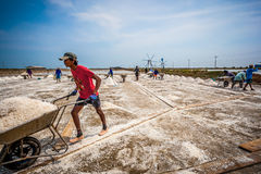 The plenty of workers and moving the raw of salt Royalty Free Stock Photos