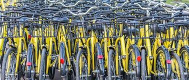 Plenty of yellow bikes Royalty Free Stock Photos