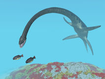 Plesiosaur Elasmosaurus Stock Photos