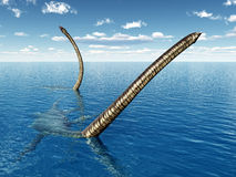 Plesiosaur Elasmosaurus Stock Image