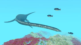 Plesiosaur Elasmosaurus Stock Photo