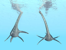 Plesiosaur Styxosaurus Stock Image