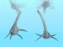 Plesiosaur Styxosaurus Стоковое Изображение