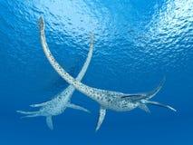 Plesiosaur Styxosaurus Стоковое Изображение RF