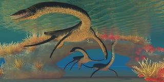 蛇颈龙海 库存图片