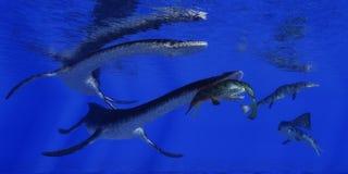 Plesiosaurus Attacks Metriorhynchus Royalty Free Stock Photos