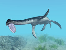 Plesiosaurus Royalty Free Stock Photos