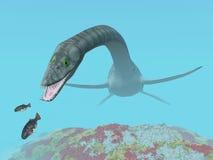 Plesiosaurus Royalty Free Stock Images