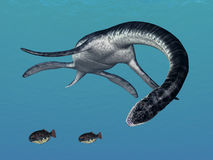 Plesiosaurus While Hunting Stock Image