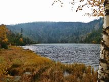 Plesne See, saurer See in Å-umava Bergen, Böhmen, Tschechische Republik, saurer Regen lizenzfreies stockfoto