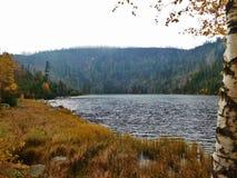 Plesne sjö, syrlig sjö i Å-umavaberg, bohemia, Tjeckien, surt regn royaltyfri foto