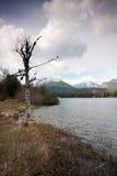 pleso λιμνών strbske Στοκ εικόνα με δικαίωμα ελεύθερης χρήσης