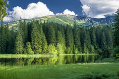 Pleso του Tarn Vrbicke σε χαμηλό Tatras, Σλοβακία Στοκ φωτογραφία με δικαίωμα ελεύθερης χρήσης