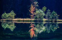 Pleso του Tarn Vrbicke, Σλοβακία Στοκ φωτογραφία με δικαίωμα ελεύθερης χρήσης