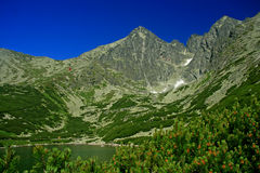 Pleso de Skalnate, haut Tatras image libre de droits
