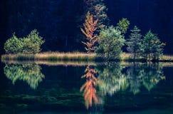 Pleso de Tarn Vrbicke, Eslováquia Foto de Stock Royalty Free