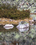 Pleso del Tarn Skalnate en alto Tatras, Eslovaquia Fotografía de archivo libre de regalías
