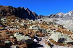 Pleso di Hincovo, alto Tatras, Slovacchia Fotografia Stock