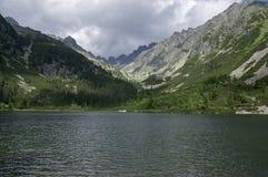 pleso Moraine-arginato di Popradske del lago, natura stupefacente, alte montagne di Tatra, Slovacchia Immagine Stock Libera da Diritti