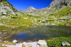 Pleso nad Skokom in Mlynicka Valley, Vysoke Tatry High Tatras, Slovakia. Mountain landscape in the Western Carpathians, Pleso nad Skokom in Mlynicka Valley stock images