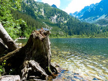 Pleso Popradske λιμνών στα βουνά Tatras Στοκ Εικόνες