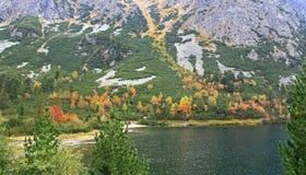 Pleso Popradske - Tarn σε υψηλό Tatras, Σλοβακία Στοκ Εικόνες