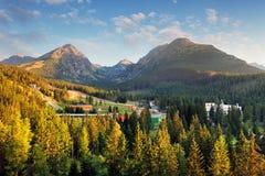 Pleso Strbske με το δάσος και το βουνό, εναέρια άποψη, Σλοβακία Στοκ Φωτογραφία