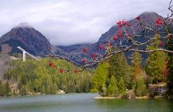 Pleso Strbske, υψηλό Tatras, Σλοβακία Στοκ Εικόνες